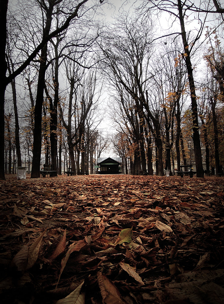 automne-by-zoctet-d5l9ga1.jpg